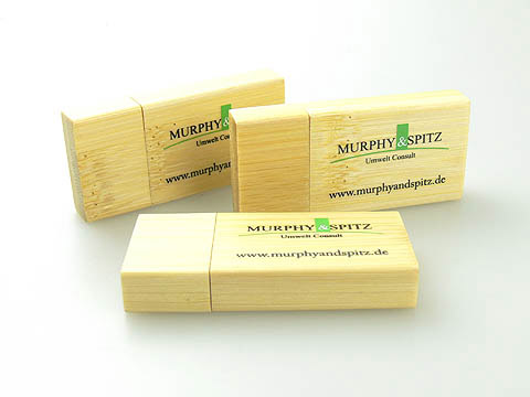 Holz-USB-Stick Umwelt Oeko design, Holz.03