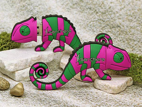 usb stick chamäleon tier leguan reptil natur