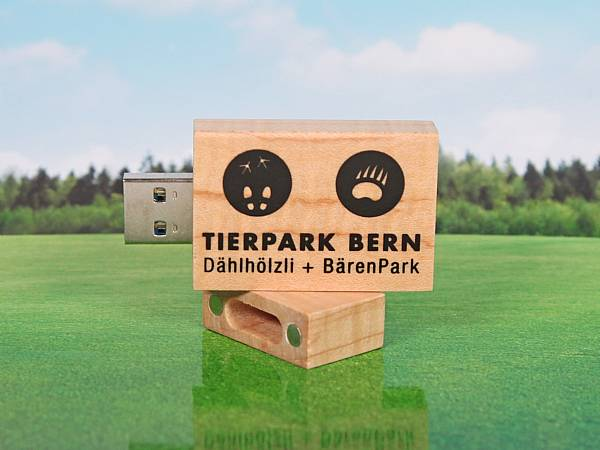 usb stick holz natur hellbraun digitaldruck