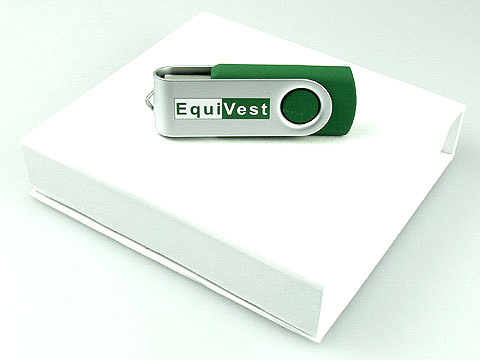 USB-Stick Sonderfarbe gruen bedruckt, Metall.01