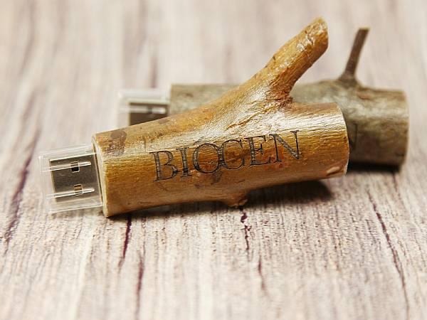 Werbegeschenk USB Stick Holz Ast Oeko Logo Gravur gravieren
